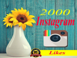 Buy-2000-Instagram-Likes